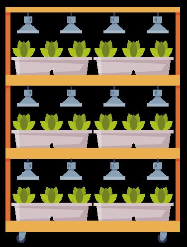 vireo semons jardin hydroponique