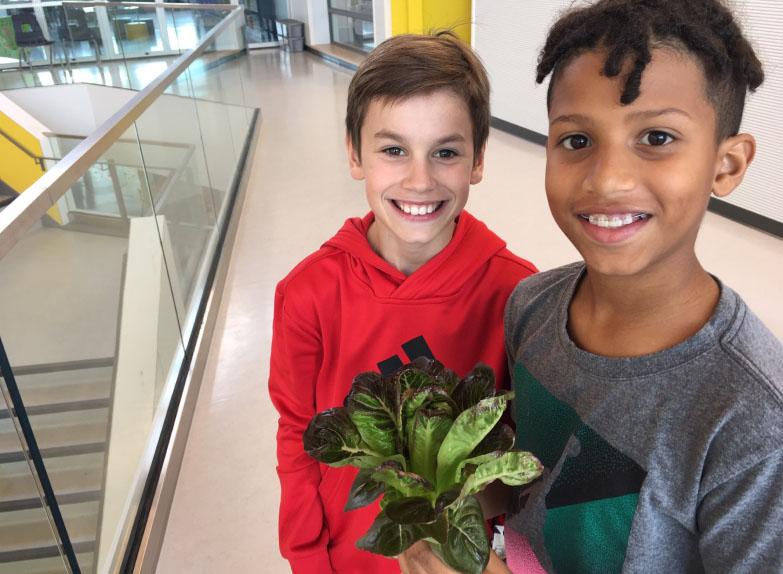 Vireo accueil enfants ecole salade