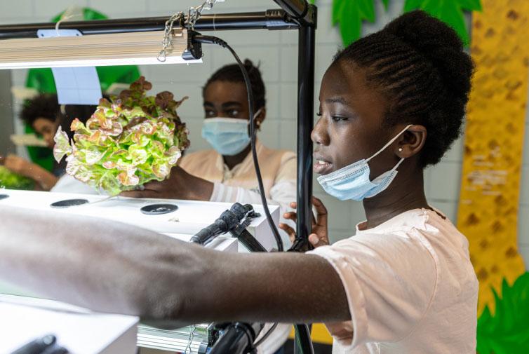 Vireo-projet-pedagogique-enfants-salade
