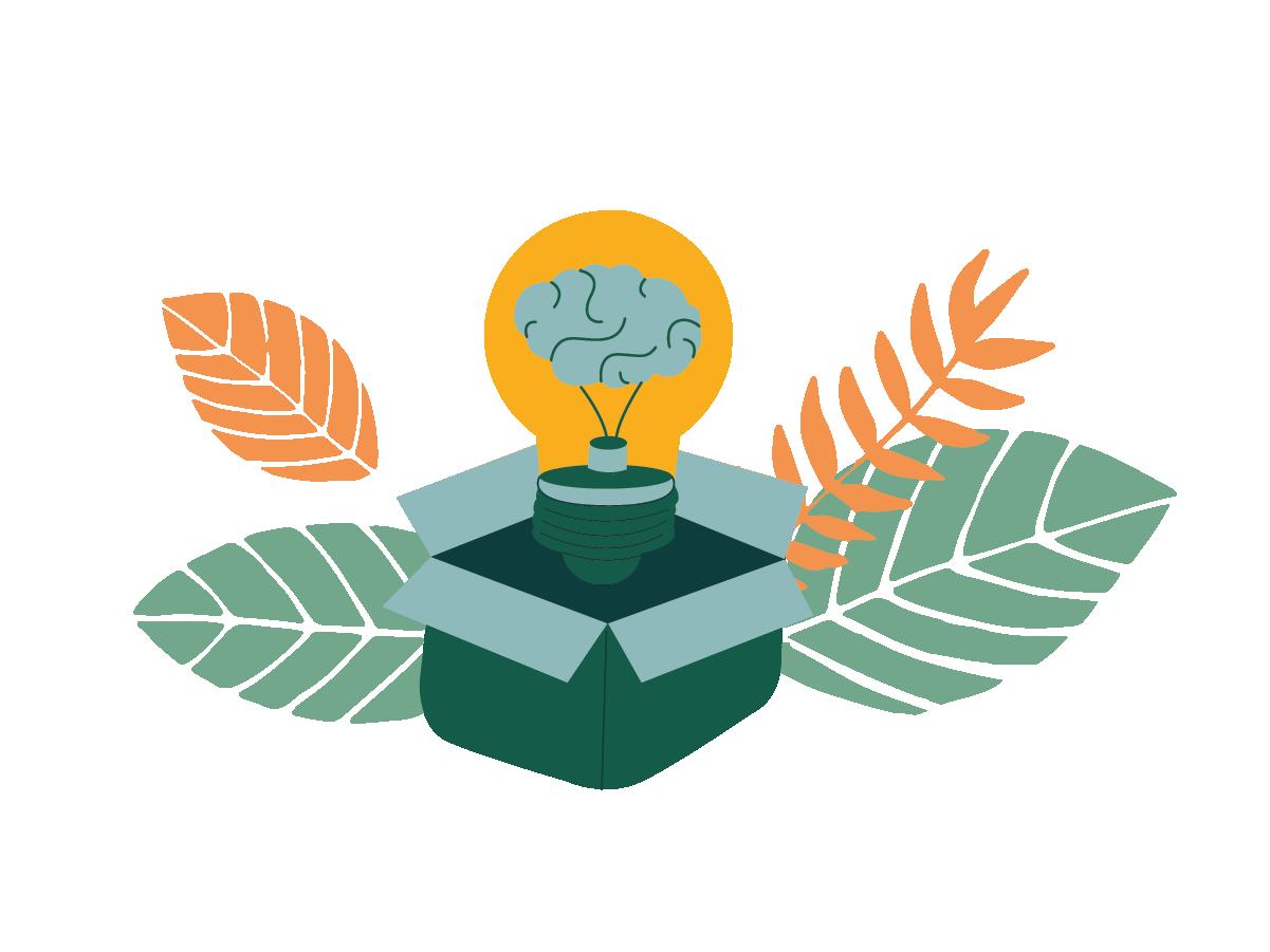 vireo learning ecology illustration